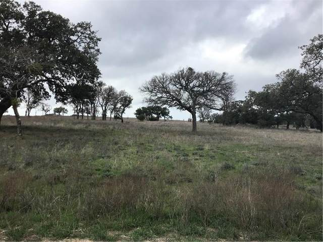 136 Red Stag Court, Other, TX 76550 (MLS #20002886) :: Treehouse Real Estate