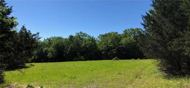 2825 Camp Creek Cemetery Road, Franklin, TX 77856 (MLS #20002958) :: The Lester Group