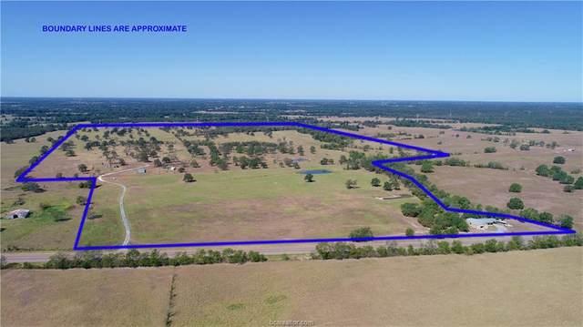 16931 Highway 90, Bedias, TX 77831 (MLS #20003099) :: Chapman Properties Group