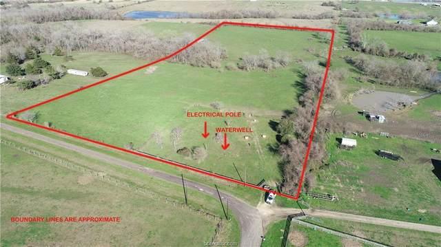11301 County Road 316A, Navasota, TX 77868 (MLS #20003135) :: Chapman Properties Group