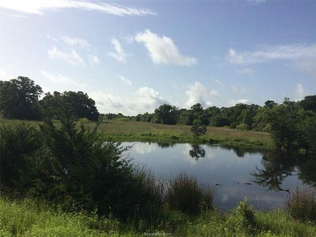 9684 Hottell Road Lot 3, Wheelock, TX 77856 (MLS #20003439) :: Cherry Ruffino Team