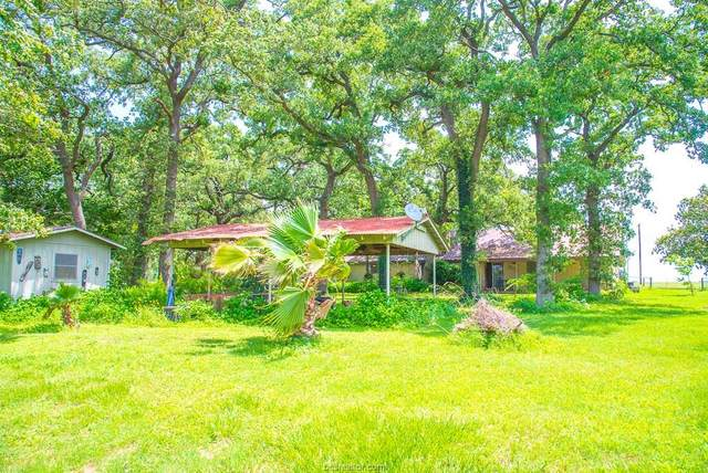 1759 County Road 402, Dime Box, TX 77853 (MLS #20003442) :: Cherry Ruffino Team