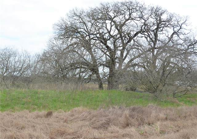 19940 W Fm 1373 Farm To Market Road, Bremond, TX 76629 (MLS #20003512) :: The Shellenberger Team