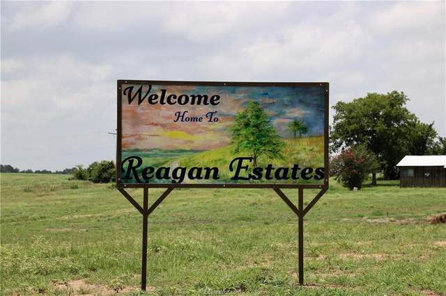 Lot 16-B Reagans Way, Navasota, TX 77868 (MLS #20003520) :: The Shellenberger Team