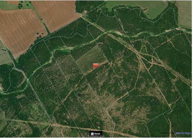 0000 100 Acres, Cameron, TX 76520 (MLS #20003559) :: The Shellenberger Team