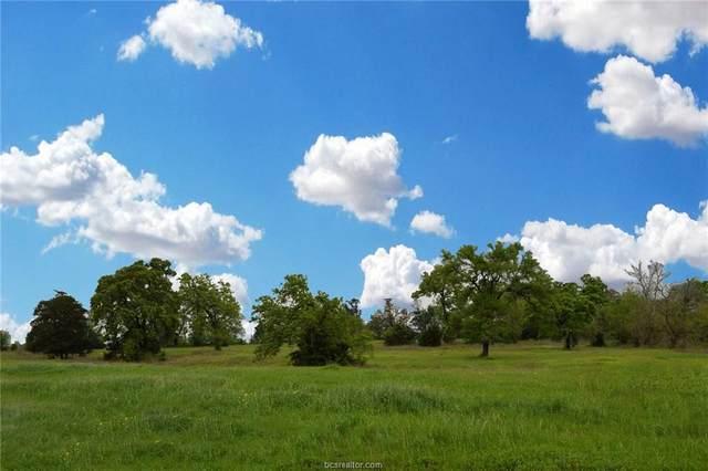 5308 County Road 220, Anderson, TX 77830 (MLS #20004972) :: RE/MAX 20/20