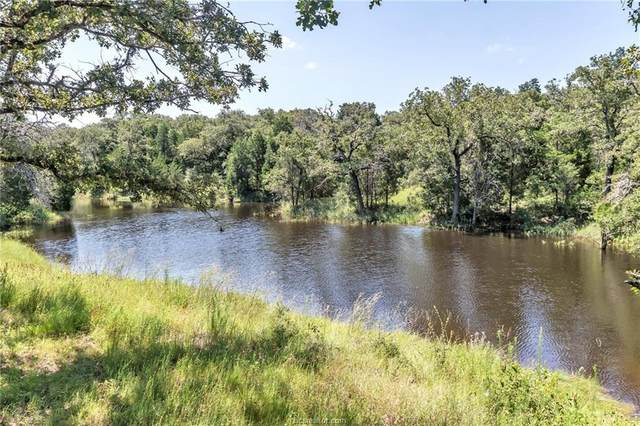 1040 County Road 350 County Road, Lexington, TX 78947 (MLS #20005139) :: Chapman Properties Group