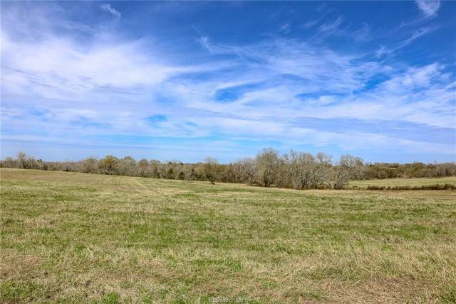 Lot 13 Reagans Way, Navasota, TX 77868 (MLS #20005231) :: Treehouse Real Estate