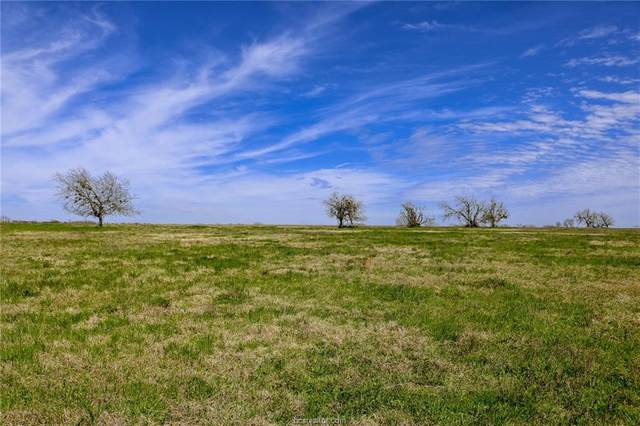 Lot 15 Reagans Way, Navasota, TX 77868 (MLS #20005234) :: Treehouse Real Estate