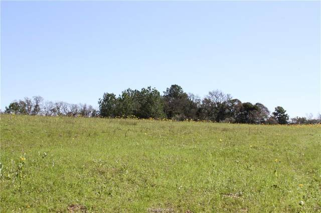 TBD Cr 450, Marquez, TX 77865 (MLS #20005265) :: RE/MAX 20/20