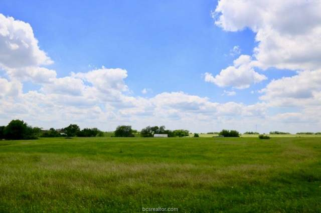 Lot 17 Reagans Way, Navasota, TX 77868 (MLS #20005742) :: Treehouse Real Estate
