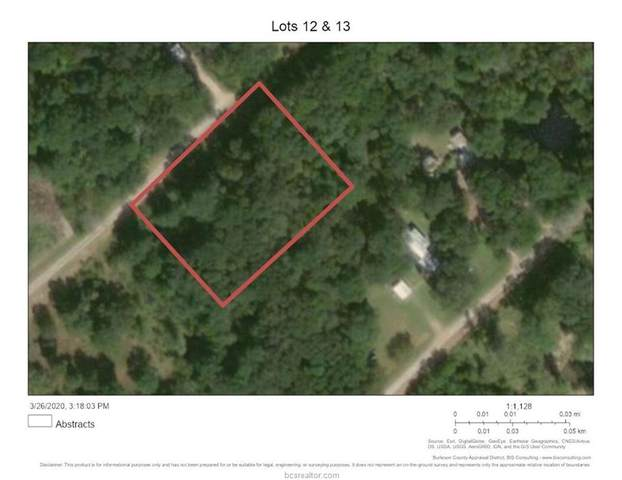 Lot 12-13 Maple Drive, Caldwell, TX 77836 (MLS #20006045) :: RE/MAX 20/20
