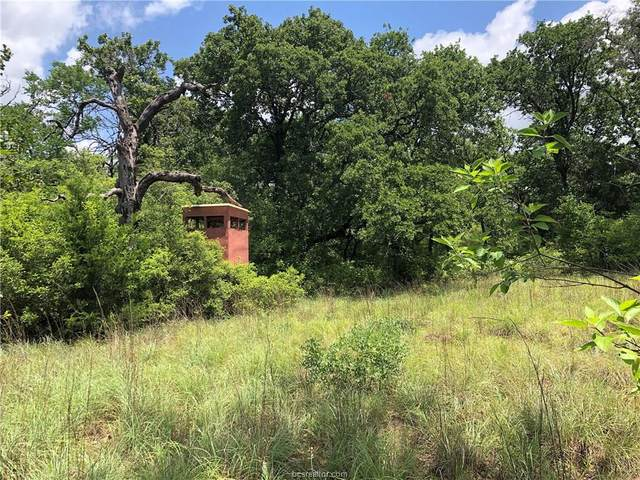 40 Acres Puckett Ranch Road, Franklin, TX 77856 (MLS #20008629) :: Treehouse Real Estate