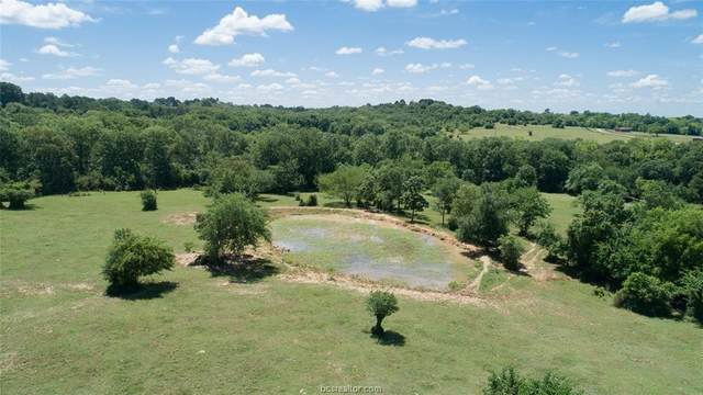 0014 Cr 306 County Road, Navasota, TX 77868 (MLS #20008701) :: Cherry Ruffino Team