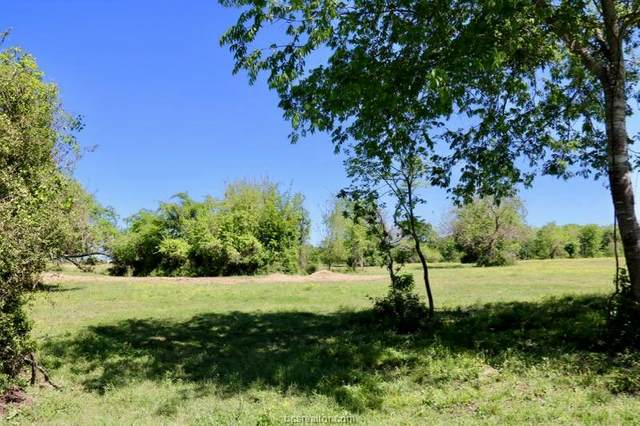 0013 Cr 306 County Road, Navasota, TX 77868 (MLS #20008702) :: Cherry Ruffino Team