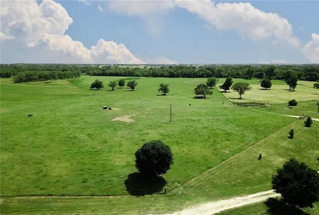 0015 County Road 185, Anderson, TX 77830 (#20009147) :: First Texas Brokerage Company