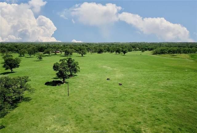 0017 County Road 185, Anderson, TX 77830 (#20009148) :: First Texas Brokerage Company