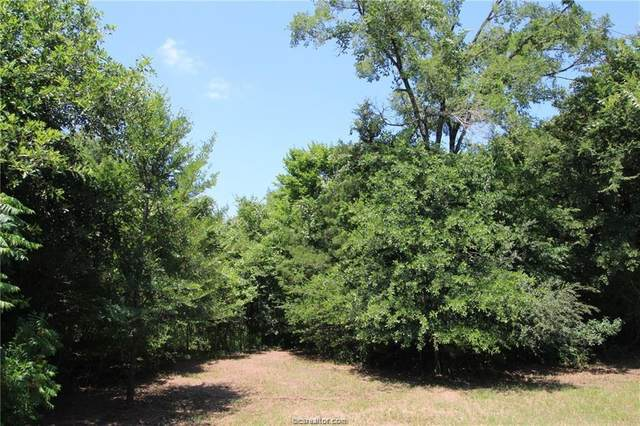 TBD Lakefront Drive, College Station, TX 77845 (MLS #20010567) :: BCS Dream Homes