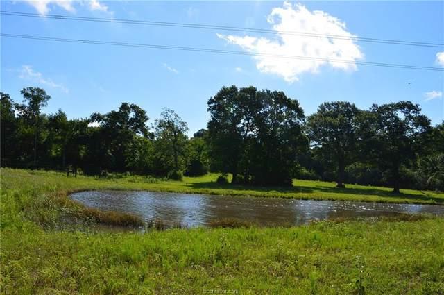 0021 County Road 155, Bedias, TX 77831 (MLS #20010980) :: Chapman Properties Group
