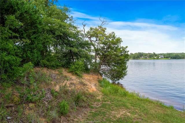 51 Trailride, Hilltop Lakes, TX 77871 (MLS #20012412) :: RE/MAX 20/20