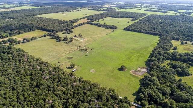 0000 Smith Lane, Bremond, TX 77859 (MLS #20012527) :: Treehouse Real Estate