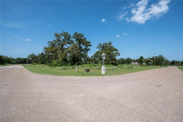 10838 Chamberlain Drive, Iola, TX 77861 (MLS #20012645) :: BCS Dream Homes