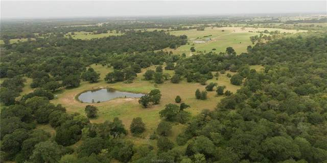 4138 County Road 167, Bedias, TX 77831 (MLS #20012694) :: My BCS Home Real Estate Group