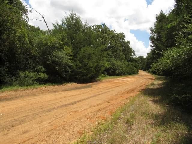 00 Tonkawa, Hilltop Lakes, TX 77871 (MLS #20012782) :: Treehouse Real Estate