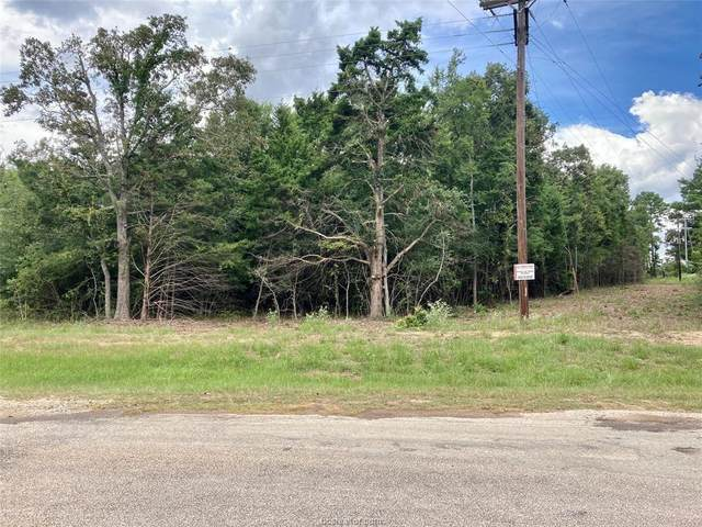 38 AC County Rd 366, Marquez, TX 77865 (MLS #20013101) :: The Lester Group