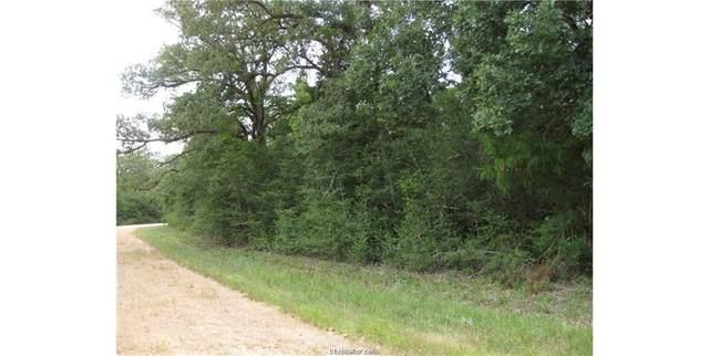 Lot 38 Shetland, Hilltop Lakes, TX 77871 (MLS #20013109) :: Treehouse Real Estate