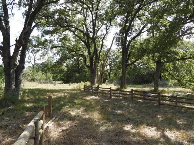 11600 Long Trussel Road, Bryan, TX 77808 (MLS #20013277) :: RE/MAX 20/20