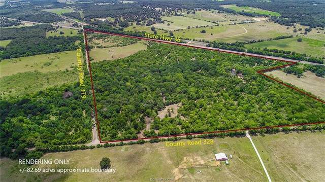 (+/-82.693 acres) Hwy 36, Cr 379, Cr 328, Caldwell, TX 77836 (MLS #20013284) :: My BCS Home Real Estate Group