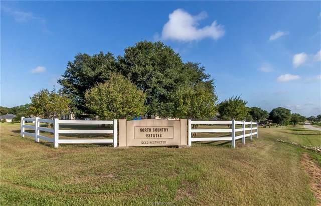 4772 Blazing Trail, Bryan, TX 77808 (MLS #20013340) :: Cherry Ruffino Team
