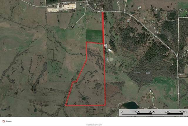 123.557 Acres Fm 1774, Anderson, TX 77830 (MLS #20013501) :: BCS Dream Homes
