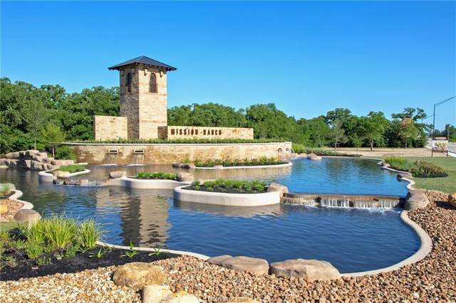3627 Hardin Hills Drive, College Station, TX 78745 (MLS #20013687) :: Cherry Ruffino Team