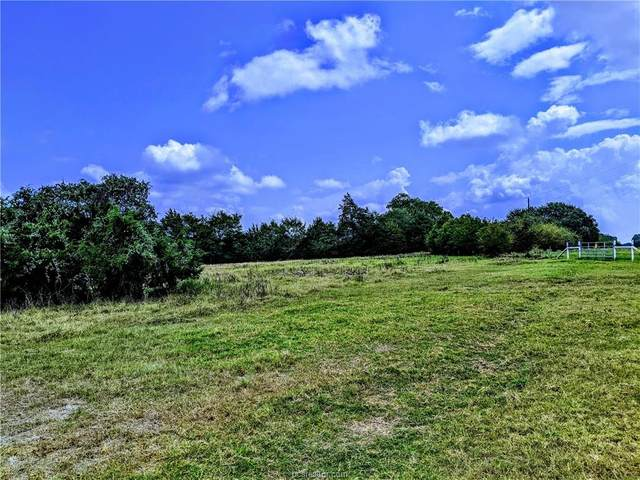TBD Fm 937 Farm To Market Road, Thornton, TX 76687 (MLS #20014431) :: Cherry Ruffino Team