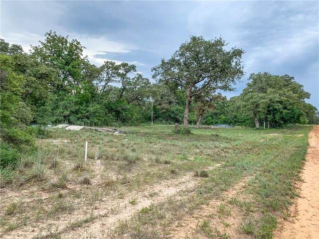 51 Youpon Lane, Hilltop Lakes, TX 77871 (MLS #20014535) :: Treehouse Real Estate