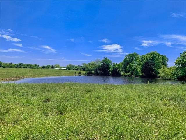 Lot 19-B Reagans Way, Navasota, TX 77868 (#20014779) :: First Texas Brokerage Company