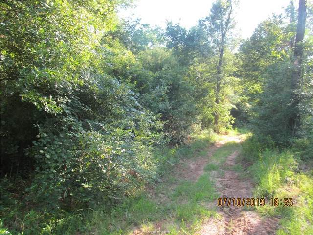 41.741 acres W Caney Road, Normangee, TX 77872 (MLS #20014905) :: Chapman Properties Group