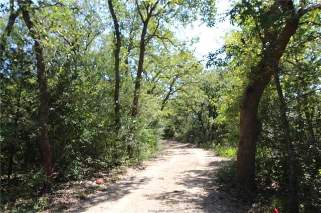 874 Deer Hill Drive, Bryan, TX 77807 (MLS #20016190) :: Cherry Ruffino Team