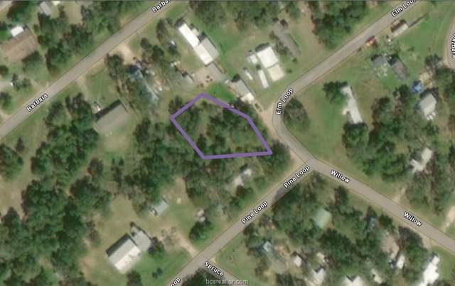 Lot 42 Elm Loop, Somerville, TX 77879 (#20016457) :: ORO Realty