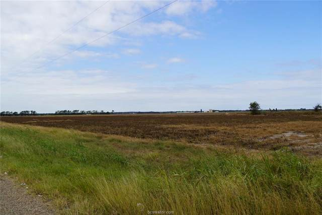 TBD County Road 272, Snook, TX 77878 (#20016902) :: ORO Realty