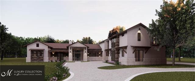 19345 Moonlit Hollow, College Station, TX 77845 (MLS #20016998) :: Treehouse Real Estate