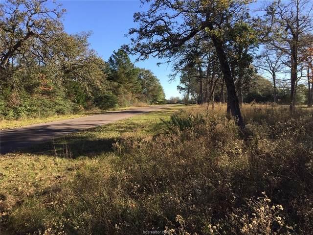 00 Bonanza Lane, Hilltop Lakes, TX 77871 (MLS #20017356) :: The Lester Group