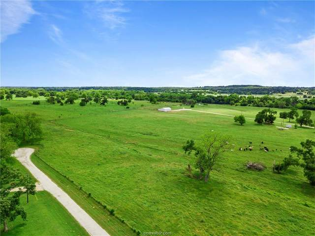 TBD Lot 25 & 31 Mitchell Street Street, Other, TX 78957 (MLS #20017929) :: Treehouse Real Estate