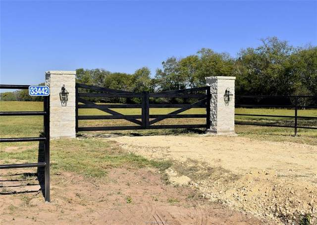 33442 Baethe Road, Waller, TX 77484 (#20017985) :: First Texas Brokerage Company