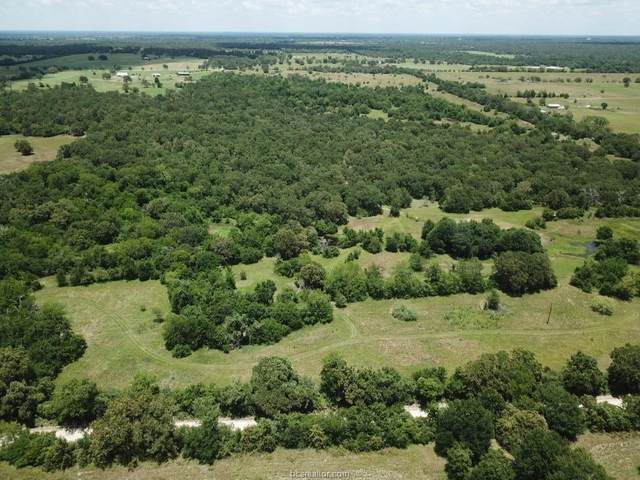 4641 County Road 129 County Road, Bedias, TX 77831 (MLS #21000012) :: My BCS Home Real Estate Group