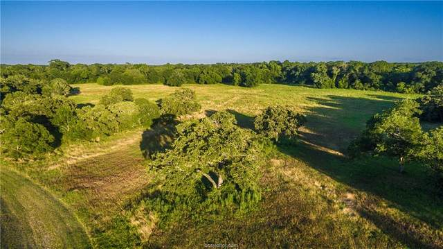 19351 Moonlit Hollow Loop, College Station, TX 77845 (MLS #21000246) :: Treehouse Real Estate
