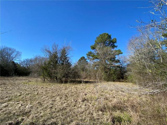 TBD County Road 261, Richards, TX 77873 (MLS #21000453) :: Treehouse Real Estate