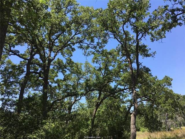 9809 Mountbatten Trail, Iola, TX 77861 (MLS #21000631) :: Treehouse Real Estate